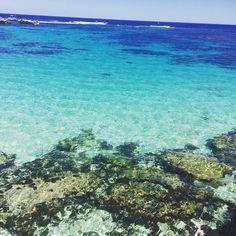 #littlesalmonbay #rottnestisland #sea by lynseymarieaky http://ift.tt/1L5GqLp