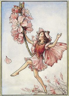 Illustration for the Almond Blossom Fairy from Flower Fairies of the Trees. A girl fairy dances to the right holding a spray of almond blossom.  										   																										Author / Illustrator  								Cicely Mary Barker