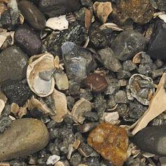 AQUATICS - SUBSTRATE: FRSHWTR - AFRICAN CICHLID GRAVEL - 2/20 LB - CARIB SEA - UPC: 84790007739 - DEPT: AQUATIC PRODUCTS