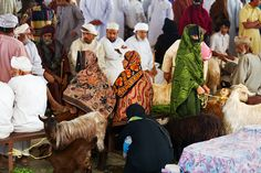 The animal souq in Sinaw. It is worth noting by the way that by far not all women in Oman wear masks.