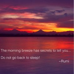 The morning breeze has secrets to tell you ~ Do not go back to sleep! ⊰❁⊱ Rumi