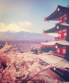 wow, the cherry blossoms, the peak in the distance, the temple, and the roofs in the distance...so much going on! its beautiful!