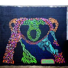 by Mica Still in Christchurch, NZ (LP)