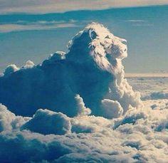17 Clouds ideas | clouds, nature, angel clouds