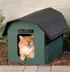 cool Finally A Heated Cat Shelter For Those Long Cold Winter Days