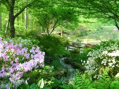 Take time to visit the South Carolina Botanical Garden. What started out as a camellia preserve in 1958 is now a startlingly peaceful oasis on the Clemson University campus. www.greenvillecvb.com