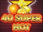 40 Super Hot Burger King Logo, Hot