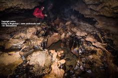 Another photograph from @sahaanirban 's #Meghalaya #caving experience !