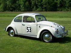 Herbie the looooove bug