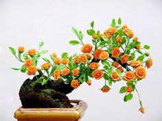 Flor Ornamental com Rosas Bonsai