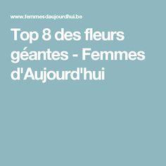 Top 8 des fleurs géantes - Femmes d'Aujourd'hui