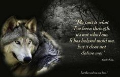 Wolf Angels Shared Let the Wolves Run Free Photo Wisdom Quotes, True Quotes, Girl Hunting Quotes, Lone Wolf Quotes, Wolf Qoutes, Wolf Spirit Animal, King Quotes, Wolf Stuff, Important Quotes
