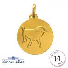 Médaille Petit Prince Or jaune 750