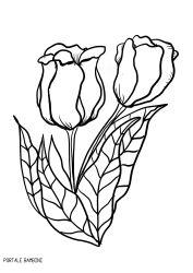 Disegni di Tulipani da Stampare e Colorare (gratis) | Portale Bambini #tulips #flowers #fiori #coloring #coloringpages #colorinspiration