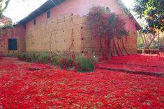 Galería de 'Penélope' de Tatiana Blass teje los muros de una capilla con una enigmática lana roja - 4