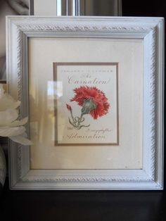 Sweet Red Flower in a sweet white frame