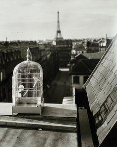 Paris, ca 1930, André Kerstész. (1894 - 1985)