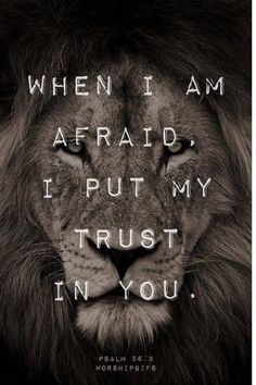 Jesus - The Lion of Judah ! Revelation The Lion of Judah will break every chain. And give to us the victory again. Bible Verses Quotes, Bible Scriptures, Lion Bible Verse, Bible Quotes For Teens, Santas Escrituras, Lion Quotes, Aslan Quotes, Tribe Of Judah, Statements