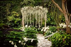 Ceremony, in a forest or a garden. At night or sunset.