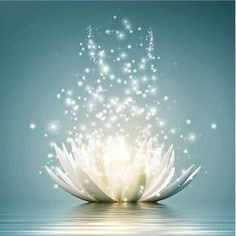 The lotus flower is a symbol of purity and enlightenment ; it is the essence of human nature. Lotus represent new life, new beginnings and the possibility of people growing to change into something beautiful. Love And Light, Belle Photo, Reiki, Gratitude, Mandala, Lily, Mindfulness, Words, Wall Art