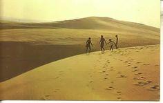 55690 Jockey Ridge Sand Dunes Nags Head NC