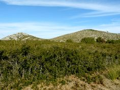 Mata Rodona (409m) y Penya Riscle (308m)