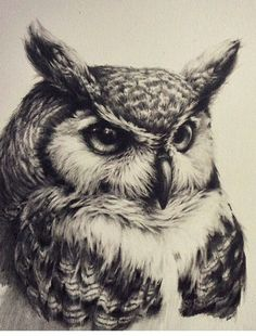 Owl tattoo, realistic, black and white: