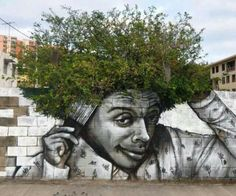 Green Tree Afro Street Art