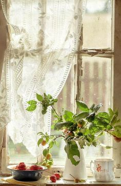 Pretty lacey window