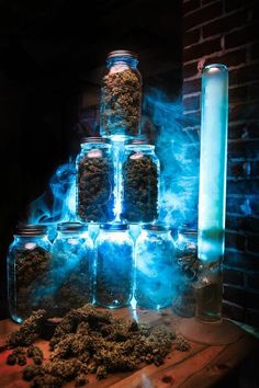 Everybody loves cannabis