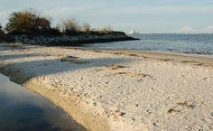 """Sunrise Park"" Melton Peter Demetre Park James Island, SC"