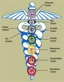 The symbol for our kundalini and the chakras.