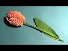 3D origami flower tulip tutorial (instruction) - YouTube