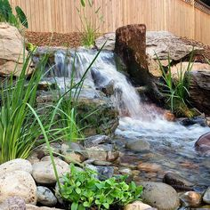 My top 3 favorite things about a Pondless Waterfall and Stream