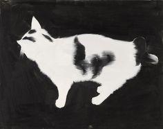 Cat I  2004  Rafal Bujonowski