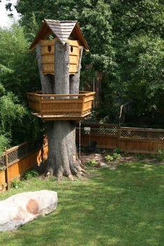 Treehouse - Molly Irwin