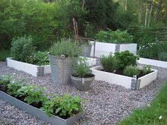 Using a mix of containers and raised beds to make vegetable garden more attractive. white raised bed with galvanized buckets and gravel, beautiful garden Potager Garden, Veg Garden, Garden Boxes, Garden Landscaping, Vegetable Gardening, Container Gardening, Raised Garden Beds, Raised Beds, Herb Garden Design