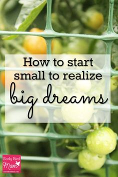 If you want to realize your dreams or reach your goals, you may need to start small. Here's why.