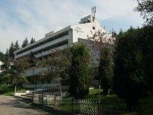 Szállás Románia, Tichet de vacanță, Hotel Moneasa Romania