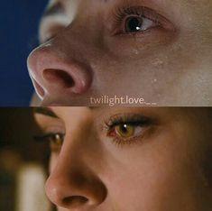 Vampire Twilight, Twilight 2008, Twilight Saga Series, Twilight Cast, Twilight Book, Edward Bella, Bella Cullen, Jack Edwards, Robert Pattinson Twilight
