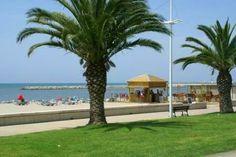 Palmiers le long de la plage Port Camargue, Palmiers, Mansions, House Styles, Gardens, Tourism, Beach, Puertas, Dibujo