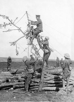 British soldiers hanging telegraph wires from a tree branch. Ww1 Pictures, Life Pictures, World War One, First World, No Mans Land, Reality Of Life, Thing 1, British Soldier, World History