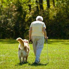 Le cancer lié à un risque réduit d'Alzheimer et vice versa