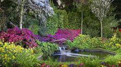 В Филадельфии расцвели миры Уолта Диснея на грандиозном цветочном шоу