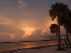 Sanibel Island ... everyone should go at least once