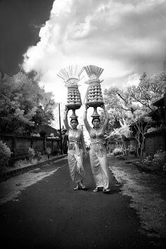 THE OFFERING - Ubud, Bali  ✯ Bali Floating Leaf Eco-Retreat ✯ http://balifloatingleaf.com/ ✯