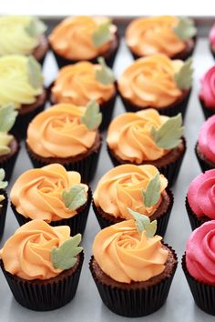 Pumpkin Cupcakes with Vanilla Frosting (Recipes) Pumpkin Frosting Recipe, Vanilla Frosting, Pumpkin Cupcakes, Frosting Recipes, Cupcake Recipes, Autumn Cupcakes, Fall Wedding Cupcakes, Fondant Recipes, Pretty Cupcakes