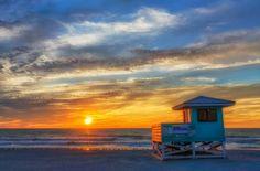 Venice Florida Beach!