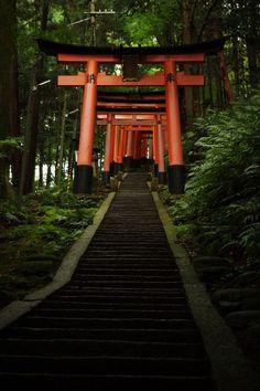 One of my favorite places on earth: Fushimi Inari-taisha, Kyoto, Japan Beautiful World, Beautiful Places, Places Around The World, Around The Worlds, Japanese Shrine, Japanese Gate, Okinawa, Fushimi Inari Taisha, Art Asiatique