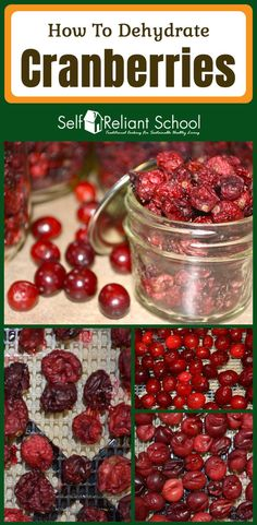 Step by step instructions on hot to dehydrate cranberries, plus two methods are tested. How To Cook Steak, How To Cook Pasta, Canning Recipes, Raw Food Recipes, Kale Recipes, Cooking Spaghetti Squash, Cooking Fish, Cooking Steak, Pickling